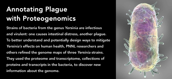 Annotating Plague with Proteogenomics