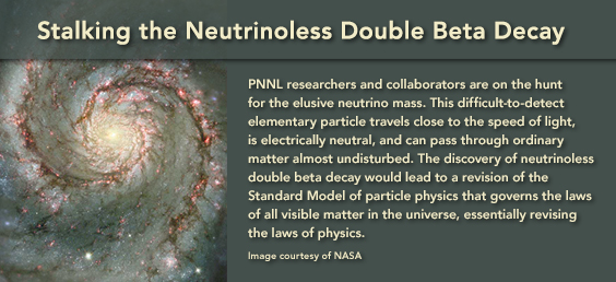 Stalking the Neutrinoless Double Beta Decay