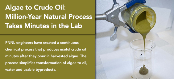 Algae to Crude Oil