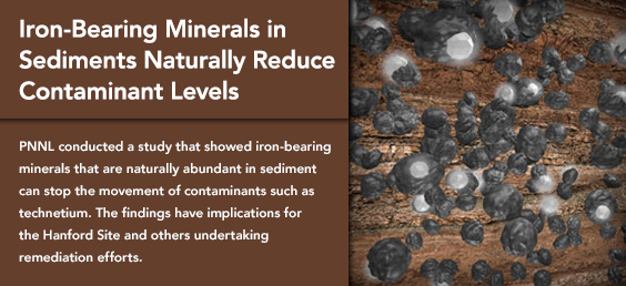 Iron-Bearing Minerals in Sediments