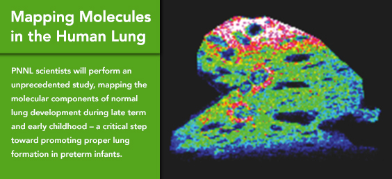 Mapping Molecules in the Human Lung