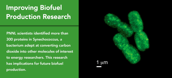 Improving biofuel production research