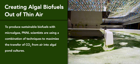 Creating Algal Biofuels Out of Thin Air
