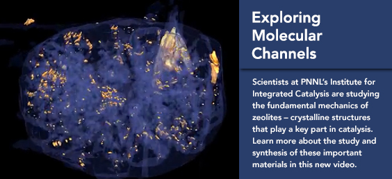 Exploring Molecular Channelsy