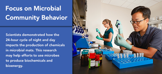 Focus on Microbial Community Behavior