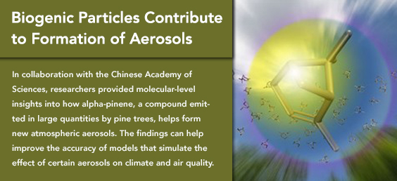 Biogenic Particles Contribute to Formation of Aerosols