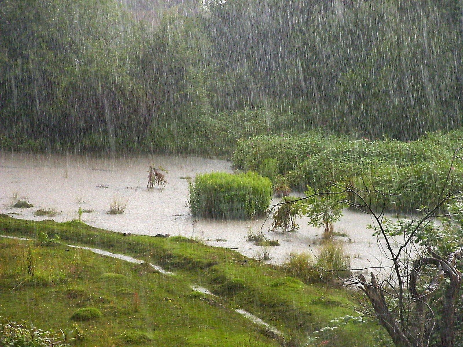 A cleansing rain falls; a soil-filled mist arises