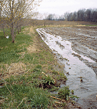 runoff when land saturated