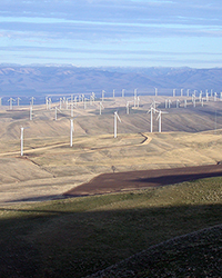 wind farm, Columbia Basin Wind Energy