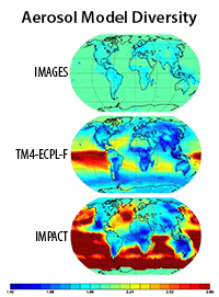 Aerosol particle diversity in models