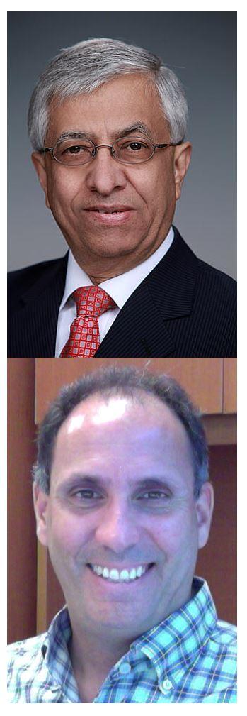 Ghassem Asrar and Fernando Miralles-Wilhelm