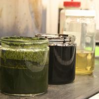 biocrude to fuel