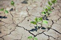 China Drought.