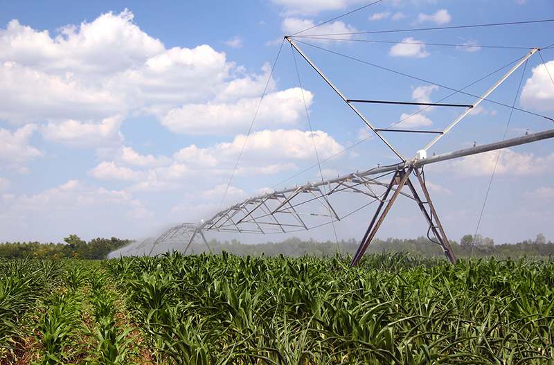 PNNL: Irrigation's Impact on Clouds and Climate