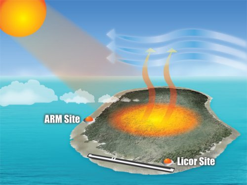 ARM Island