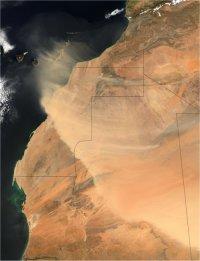 Saharan Desert