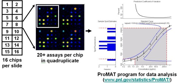 ELISA microarray analysis