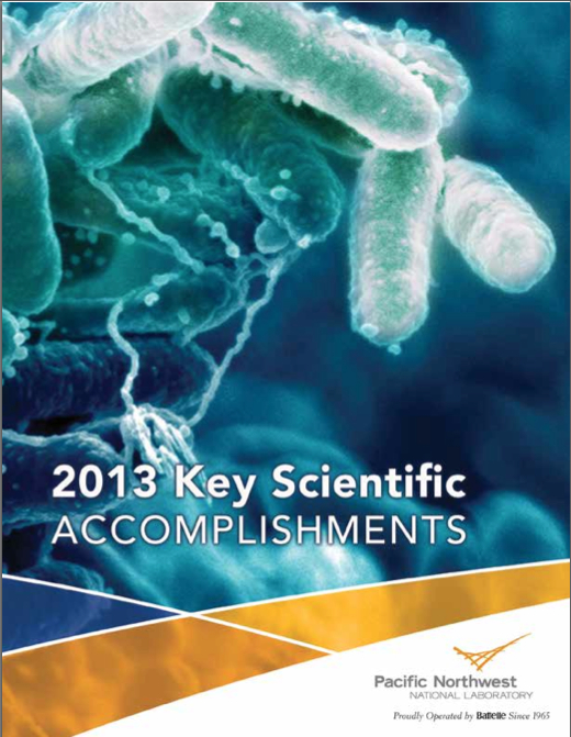 2013 Accomplishments Report Cover