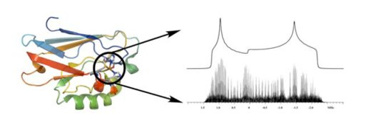 solid-state NMR