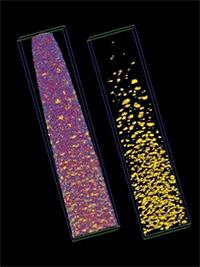 Atom probe tomography results