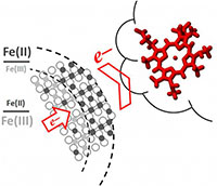 Iron exiting nanoparticles