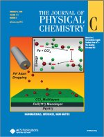 Journal cover  Copyright 2009 American Chemical Society