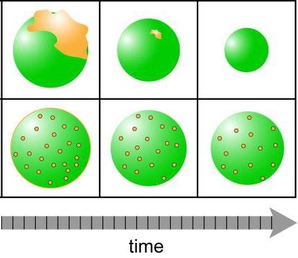 Airborne particle illustration