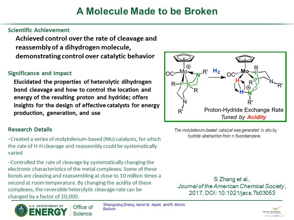 PowerPoint slide summarizing A Molecule Made To Be Broken