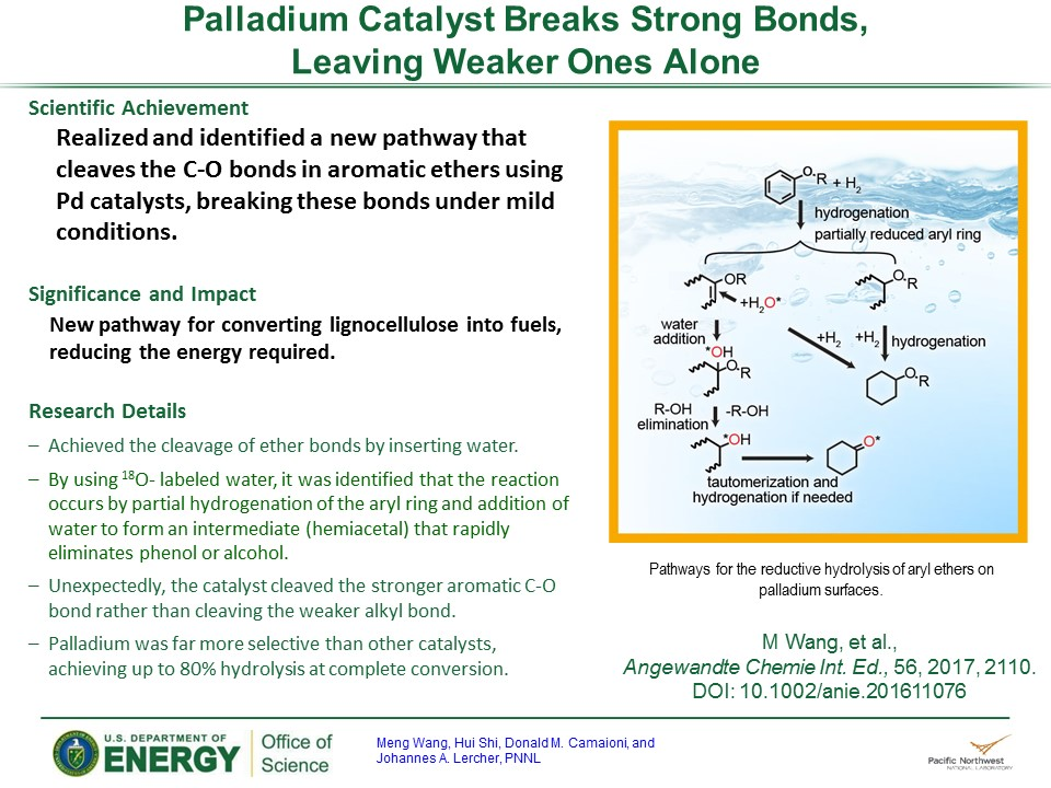 PowerPoint slide summarizing Palladium Catalyst Charters A New Path