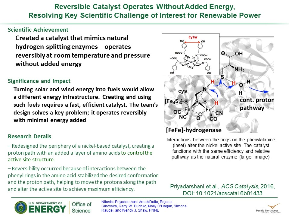 PowerPoint slide summarizing There and Back Again: Catalyst Mediates Energy-Efficient Proton Transport for Reversibility