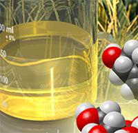 molecules and liquid