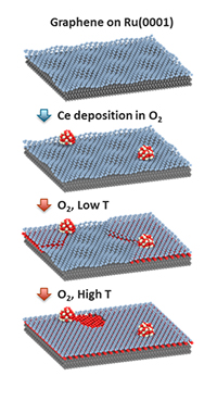 Graphene and oxygen spillover
