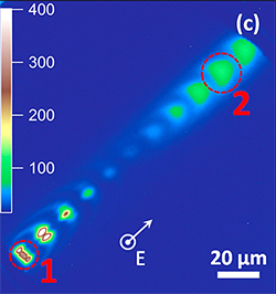 Microscopy image of plasmon movement