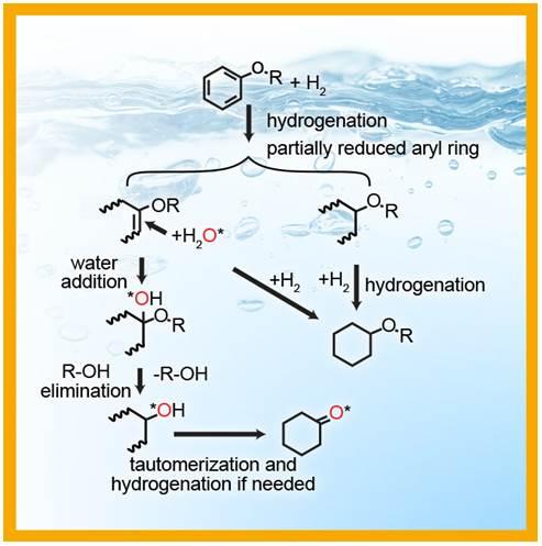 Palladium catalyst takes new pathway.