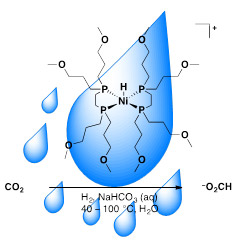 Water droplet with catalyst and carbon dioxide reaction