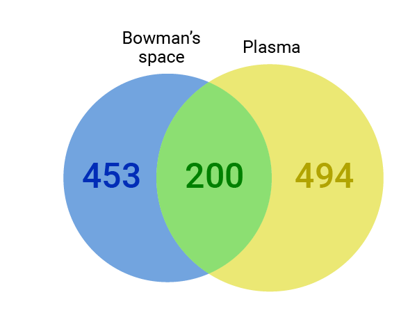 Proteomic analysis confirmed the expected overlap in proteins between Bowman's space filtrate and normal plasma, while also ruling out plasma contamination in the filtrate sample.