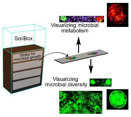 Graphic of Soilbox