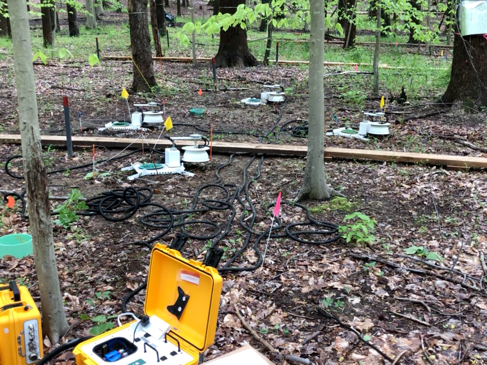 Box-like instruments on the ground near trees