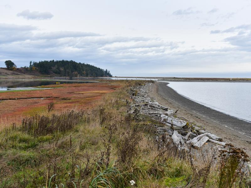 Coastal Science at Sequim Washington