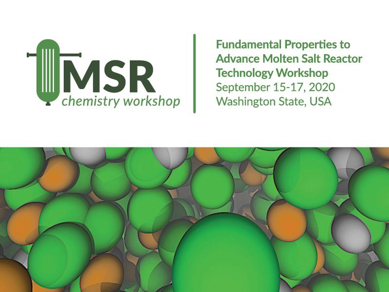 Simplified oblong image of a reactor and image of molten salt molecules colored green and orange. Plus text.