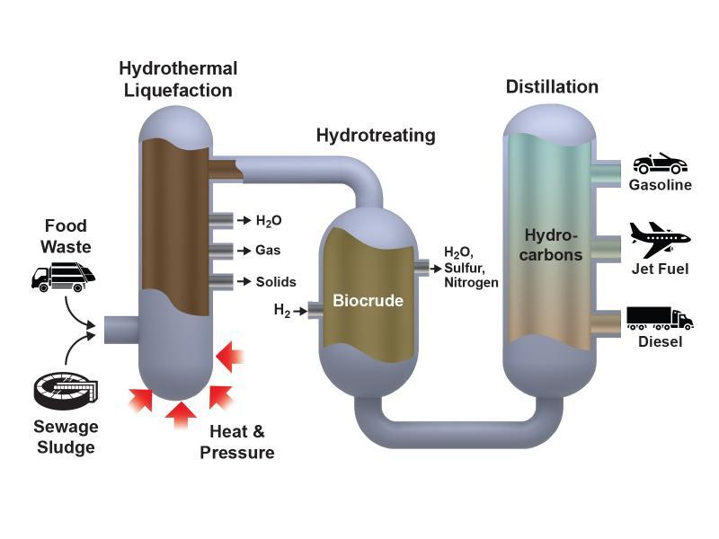 Biowaste to biofuel conversion process