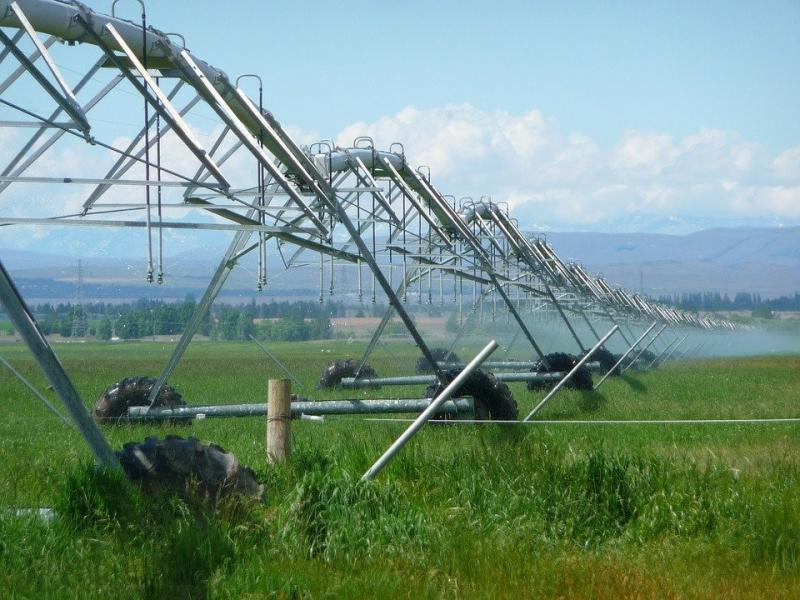 Large sprinkler system on a field of crops