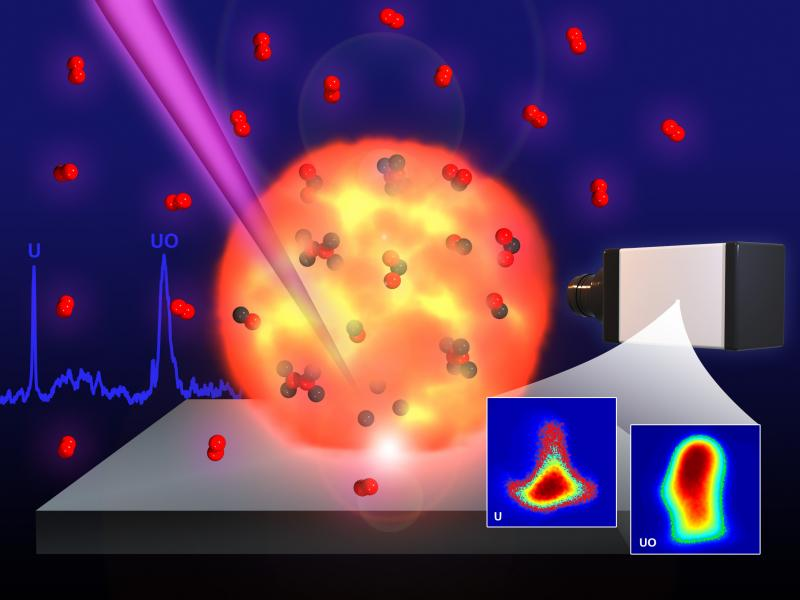 High resolution imaging of atoms and molecules in laser produced plasmas.