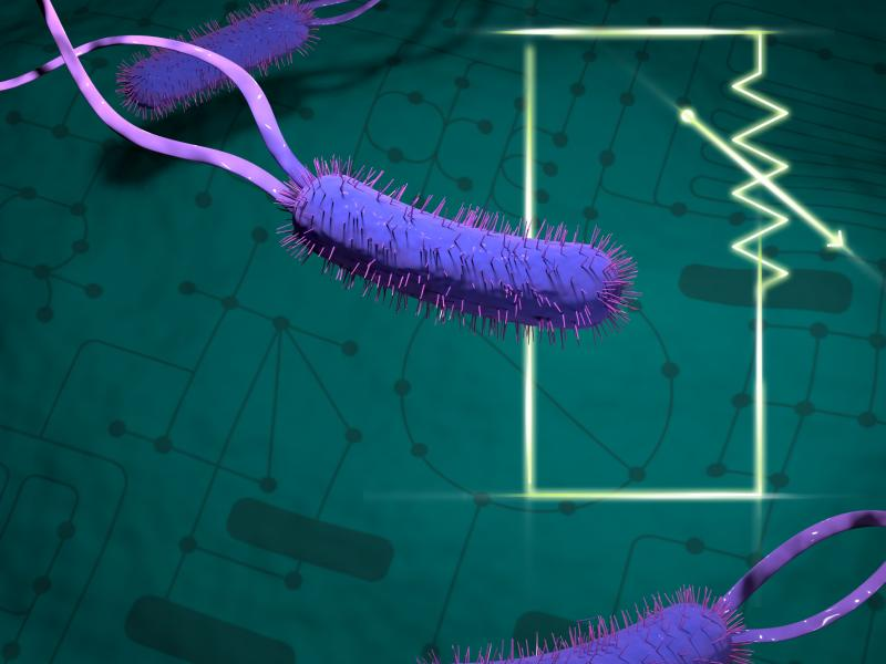 illustration of purple bacteria swimming over a green circuit diagram