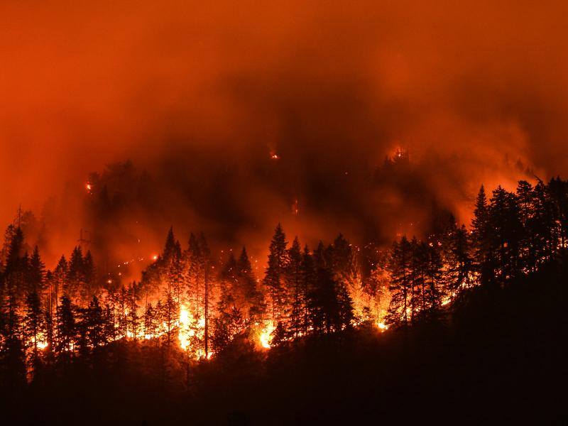 Wildfire rages near the Columbia River Gorge in the 2017 Eagle Creek Fire. Hydro-meteorological conditions like humidity, as well as human-caused factors, are essential in predicting and preparing for wildfire, according to PNNL scientists. (© Christian Roberts-Olsen | Shutterstock.com)