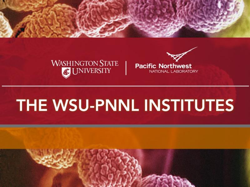 The WSU-PNNL Institutes general banner