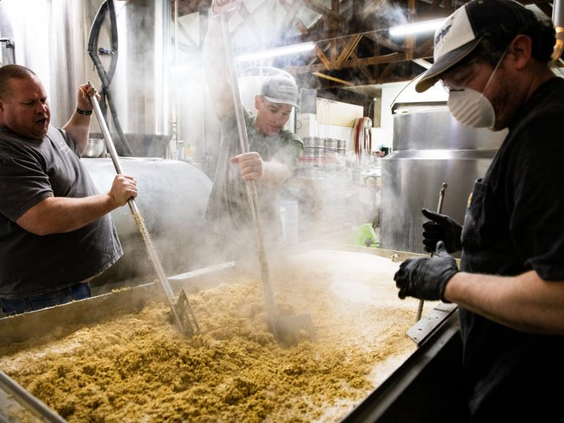 People mashing grain at a brewery