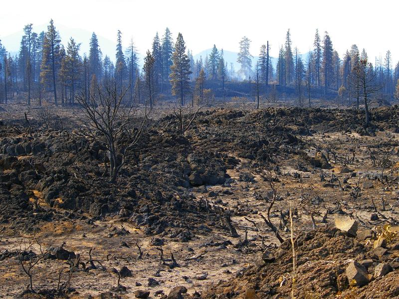 A scorched Northern California landscape remains after wildfire passed through the area, leaving charred vegetation. Increased risk of wildfire is one potential effect of drier winters, which PNNL scientists project for California after probing the double-ITCZ bias. (Photo by © Michael Neil Thomas | Shutterstock.com)