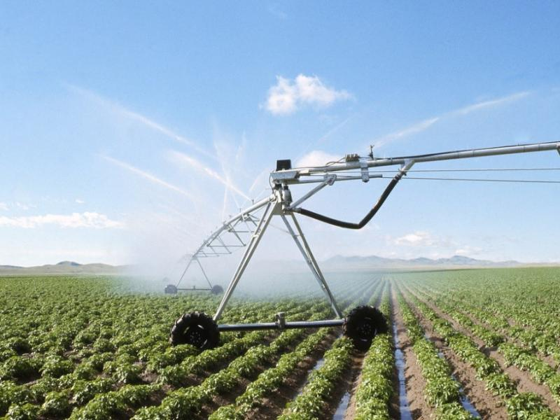 Researchers projected increased crop usage of precipitation and irrigation water by the end of this century