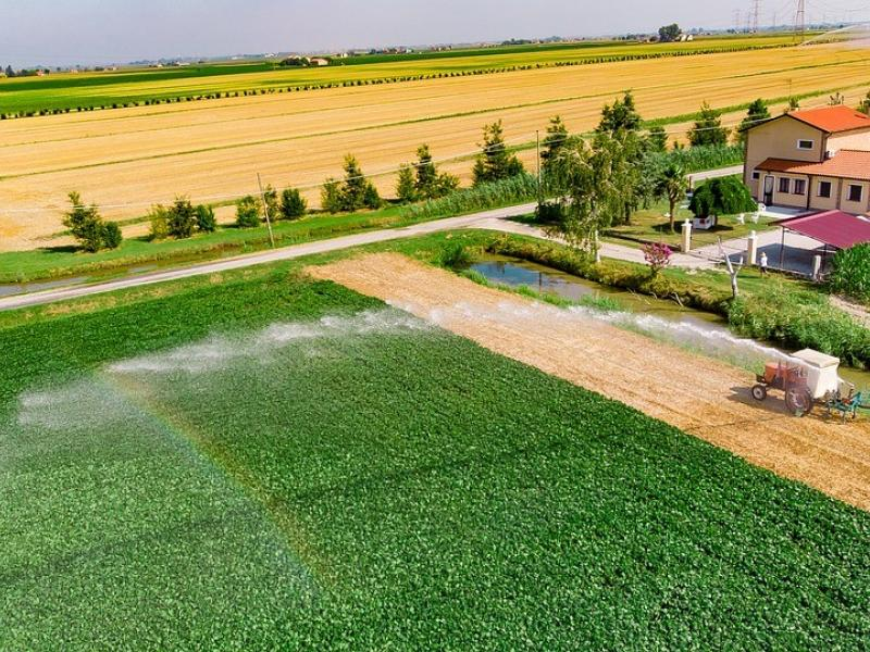 Large agricultural area being watered